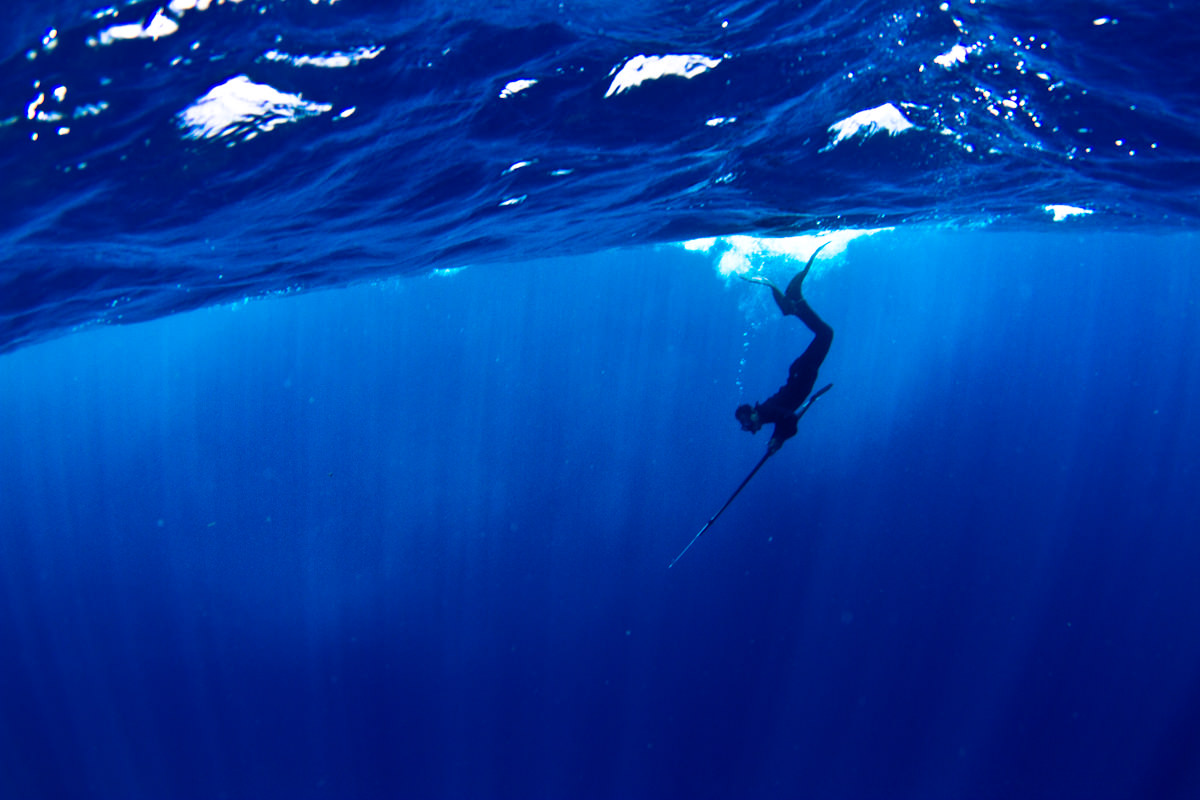 Prepping for Your First Spearfishing Trip: 3 Things to ...